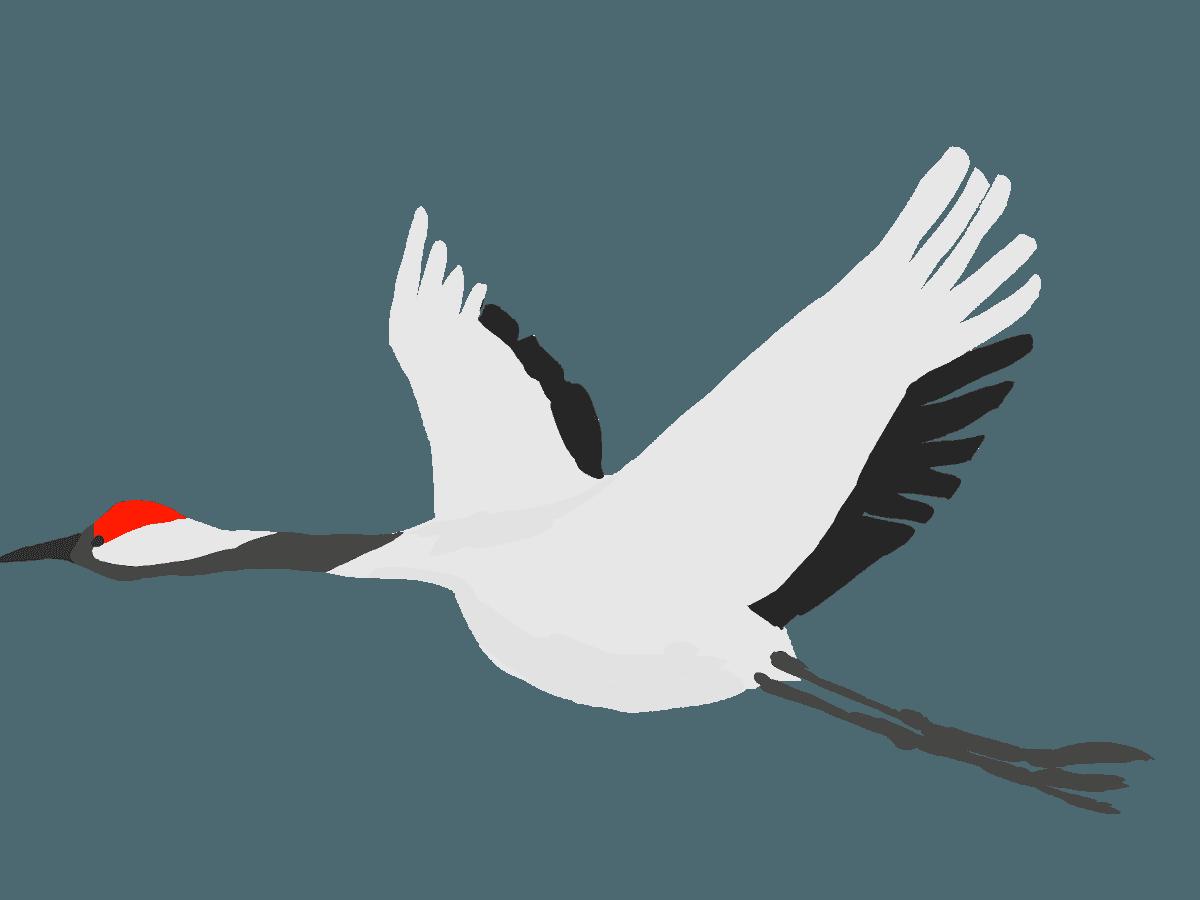 空高く飛ぶ鶴のイラスト