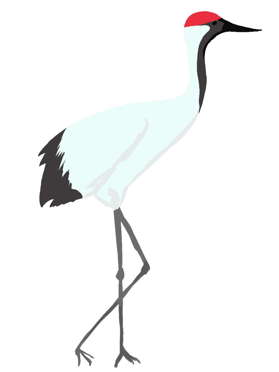 歩く鶴のイラスト