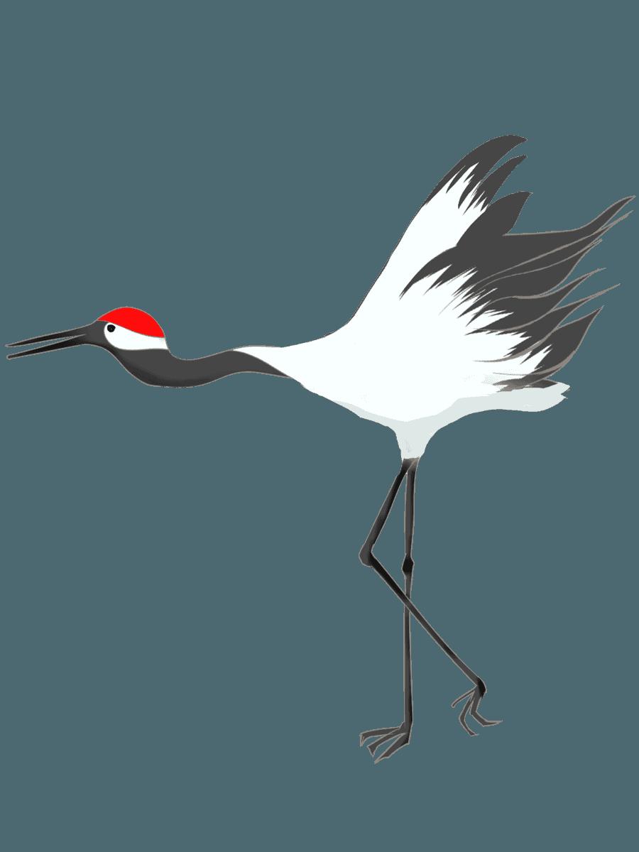 羽ばたこうとしている鶴イラスト