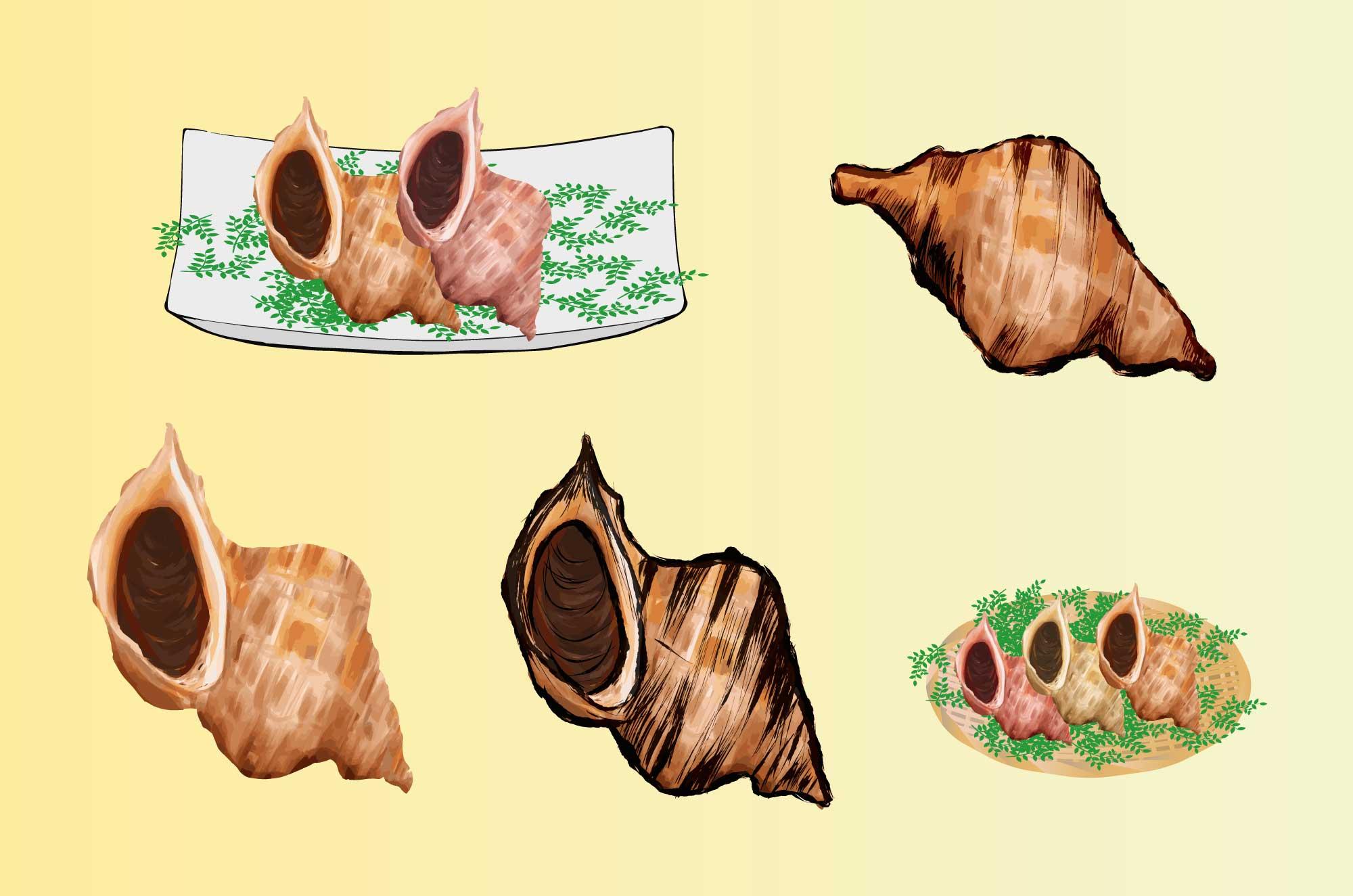 つぶ貝イラスト - 無料海産の墨絵・挿絵フリー素材