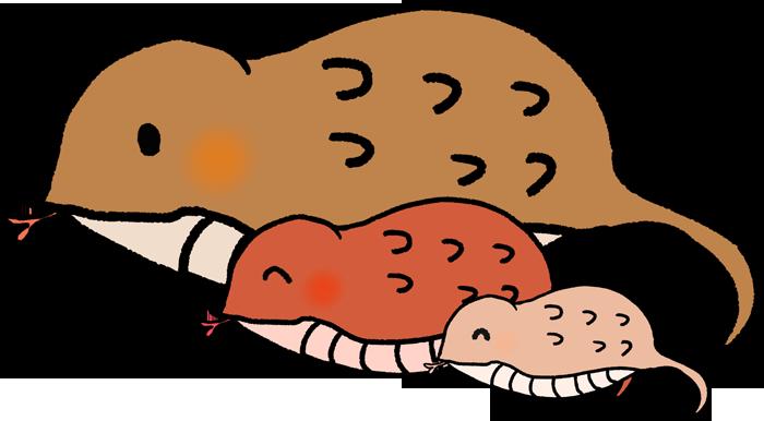 ツチノコの親子のイラスト