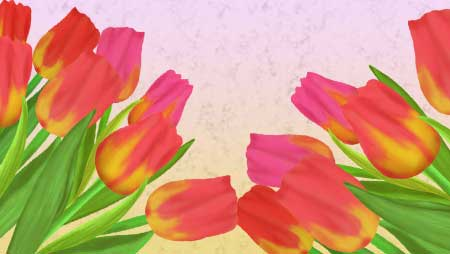 チューリップイラスト - 赤・黄・白の可愛い花の無料素材