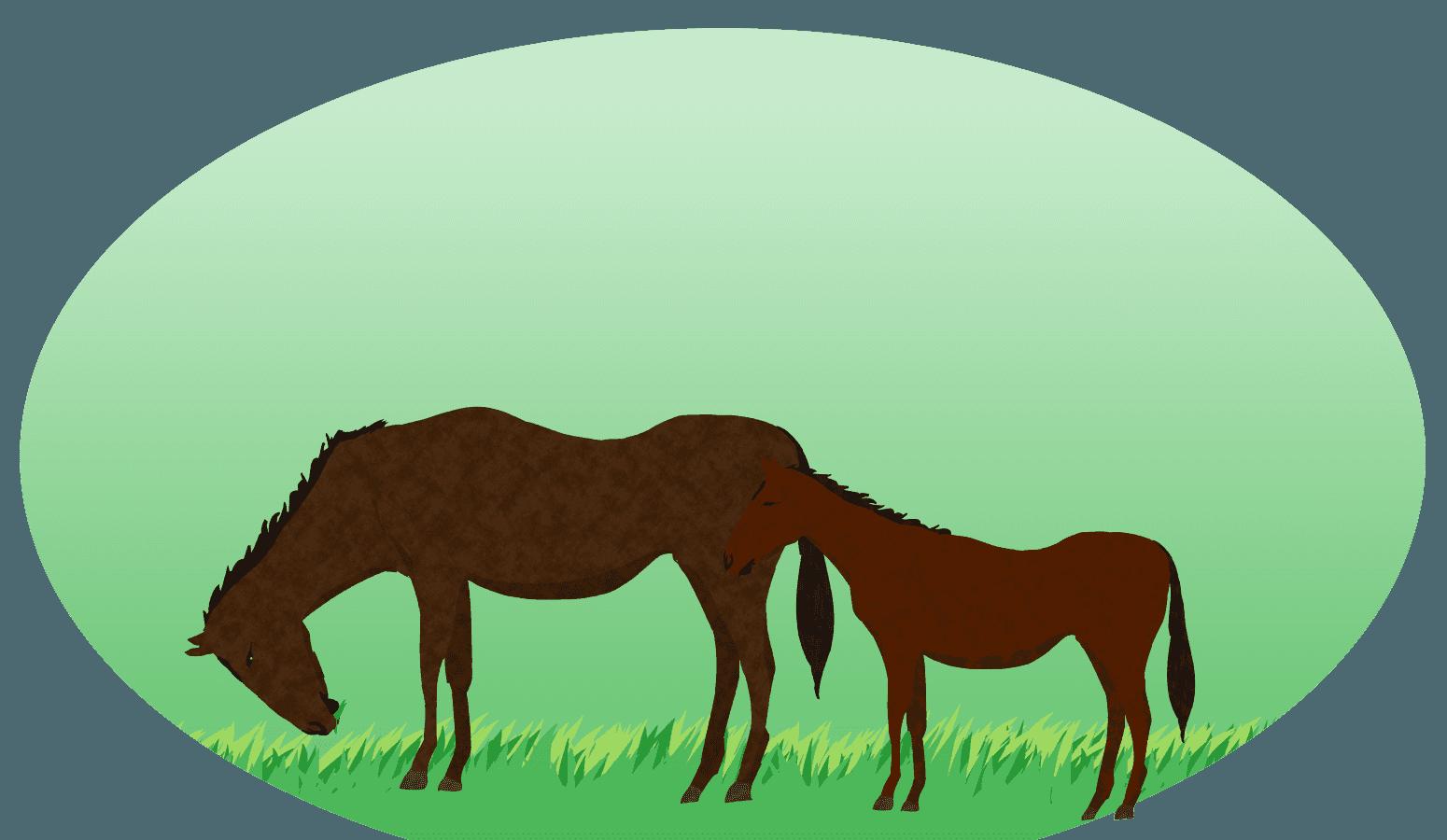 草原の馬の親子の風景イラスト