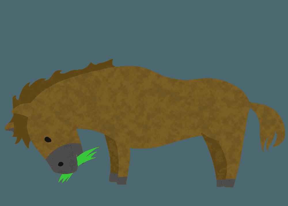 牧草を食べる可愛い馬のイラスト