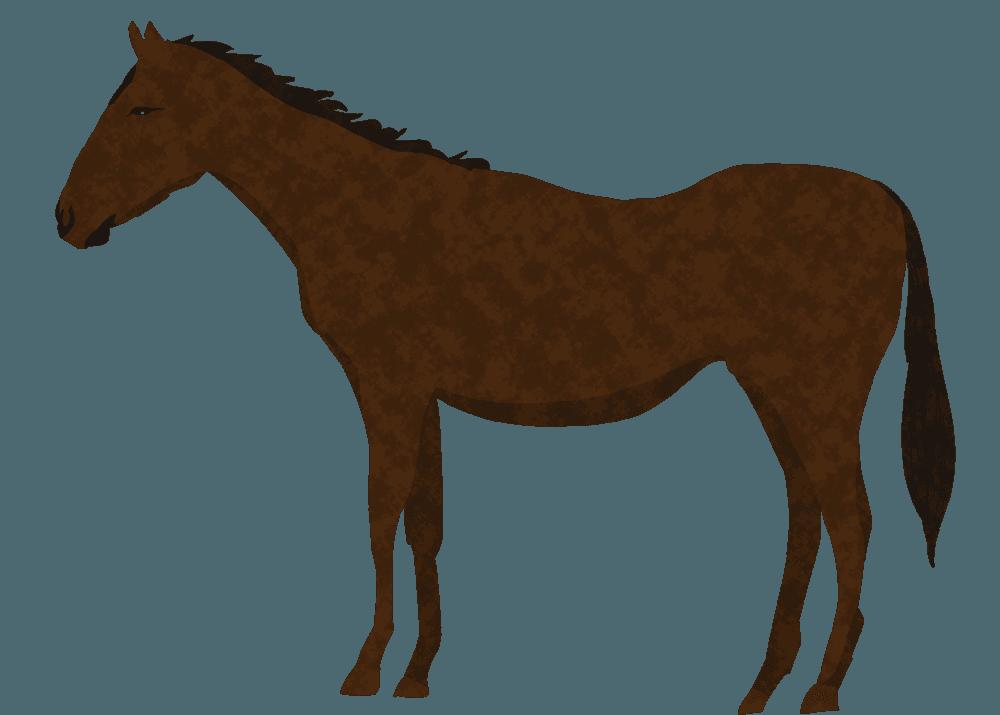 かっこいい馬イラスト