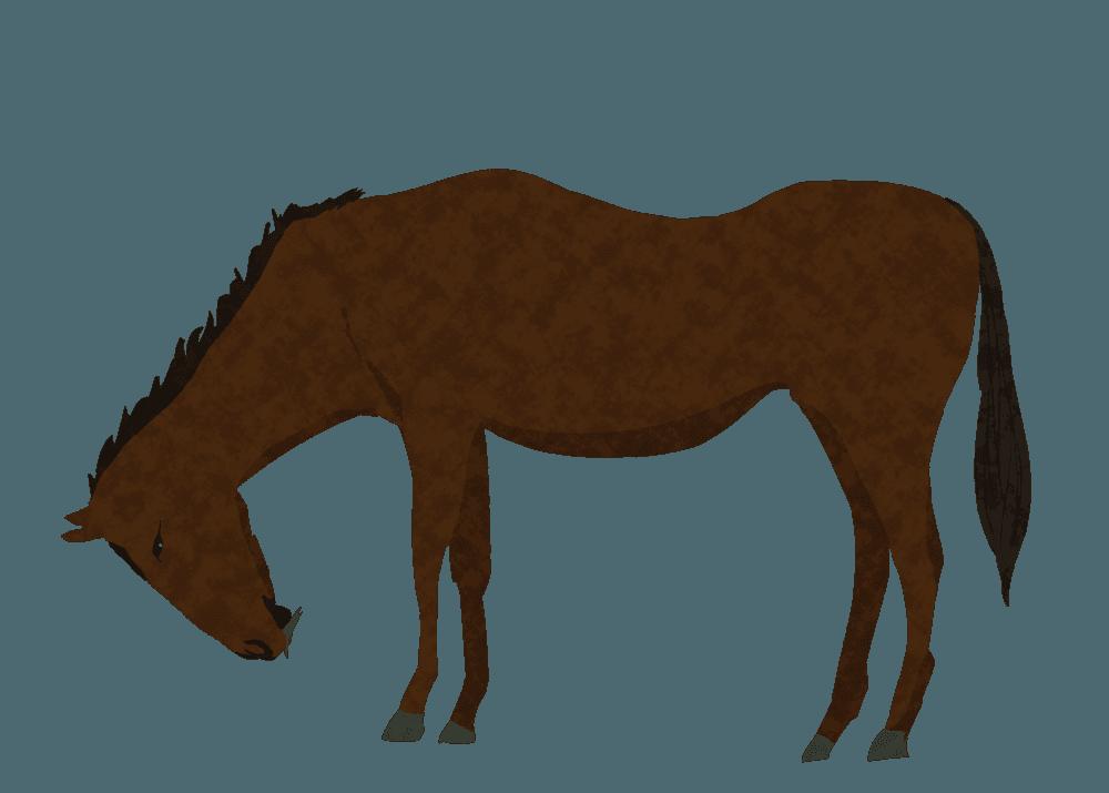 牧草を食べるかっこいい馬イラスト