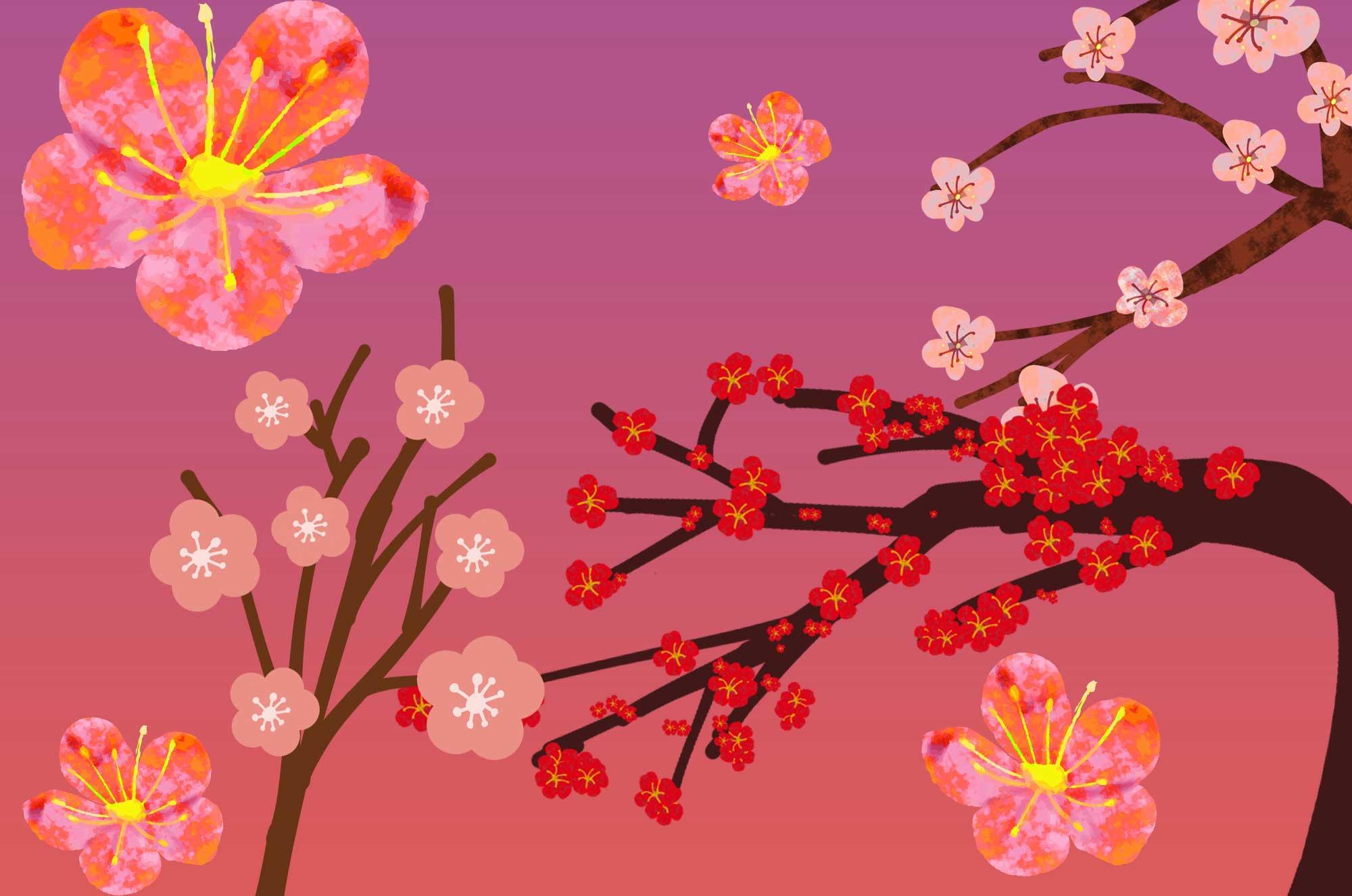 梅の花イラスト - 手書きで描く和の花無料素材