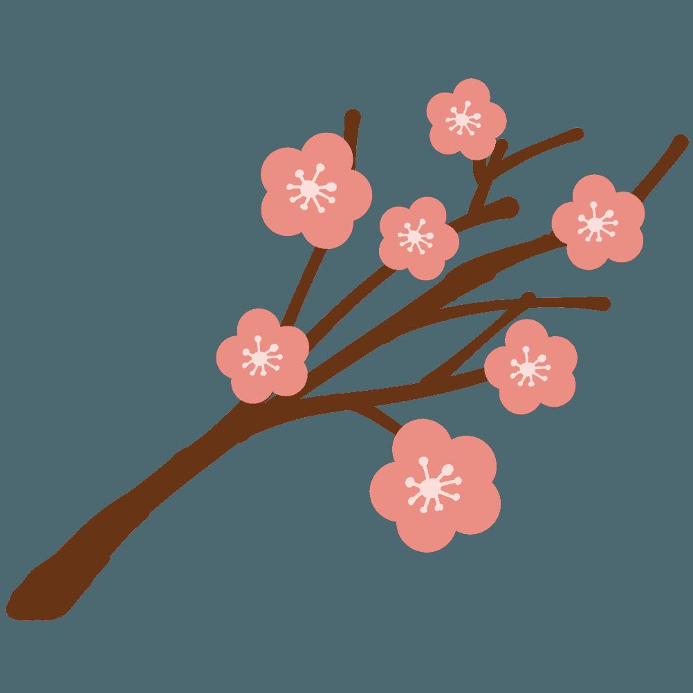 可愛い梅の枝と花イラスト