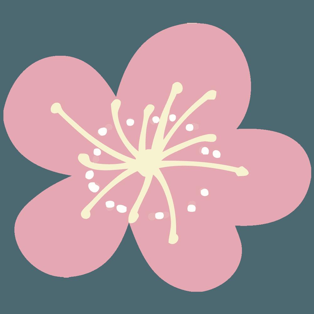 ラフな梅の花イラスト