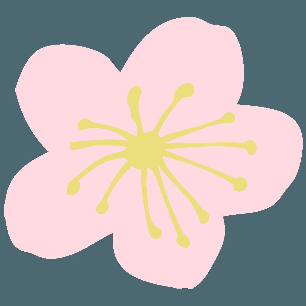ピンクの梅の花イラスト