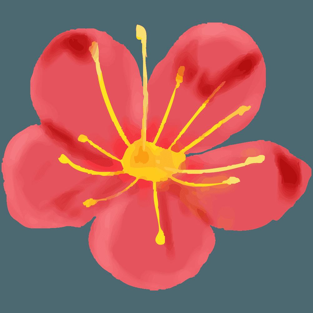 可愛い梅の花イラスト
