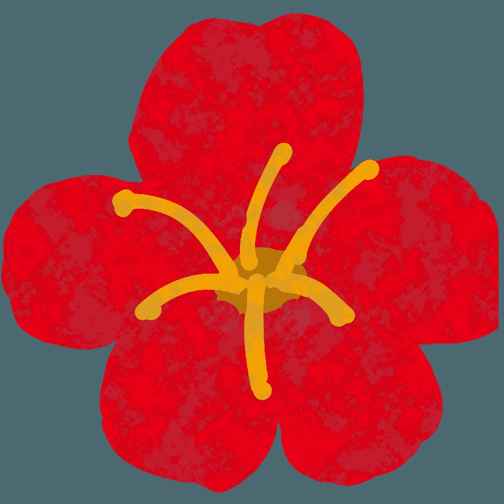 真っ赤な手書き梅の花イラスト