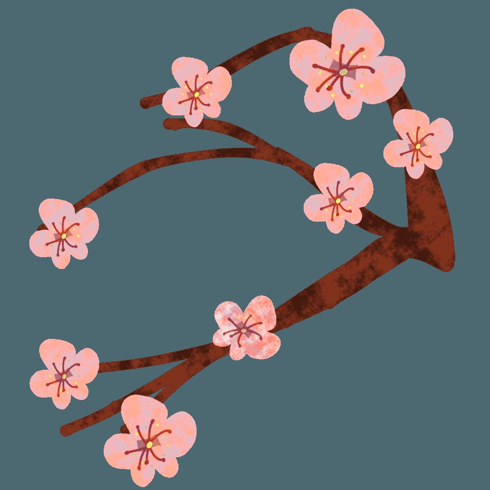 シンプルな梅の花と枝イラスト