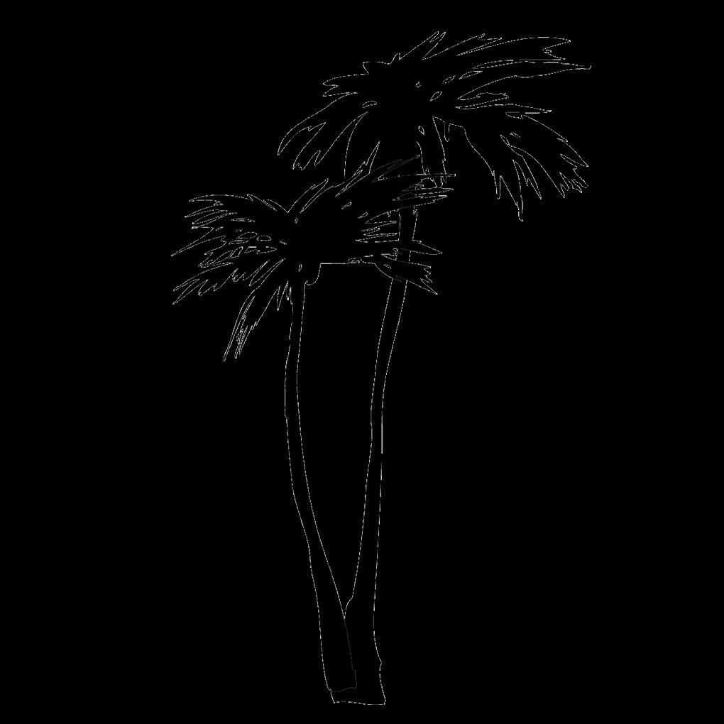 椰子の木のイラスト
