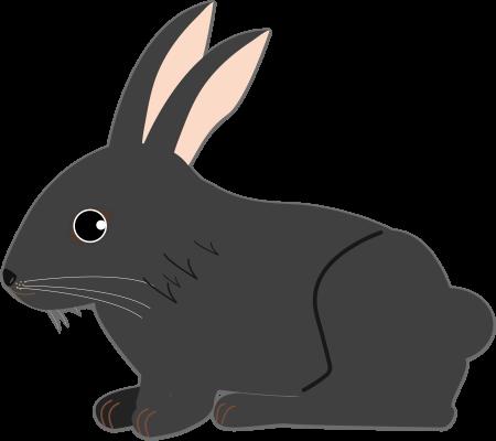 黒うさぎのイラスト