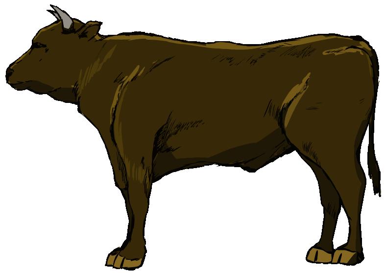 かっこいい和牛のイラスト