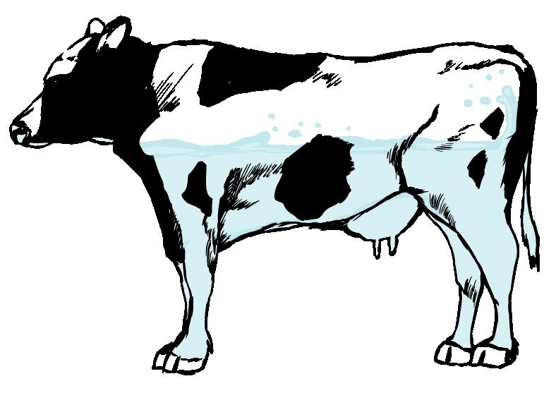 不思議な牛のイラスト