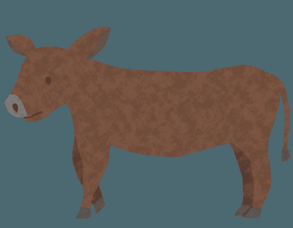 可愛い子牛イラスト