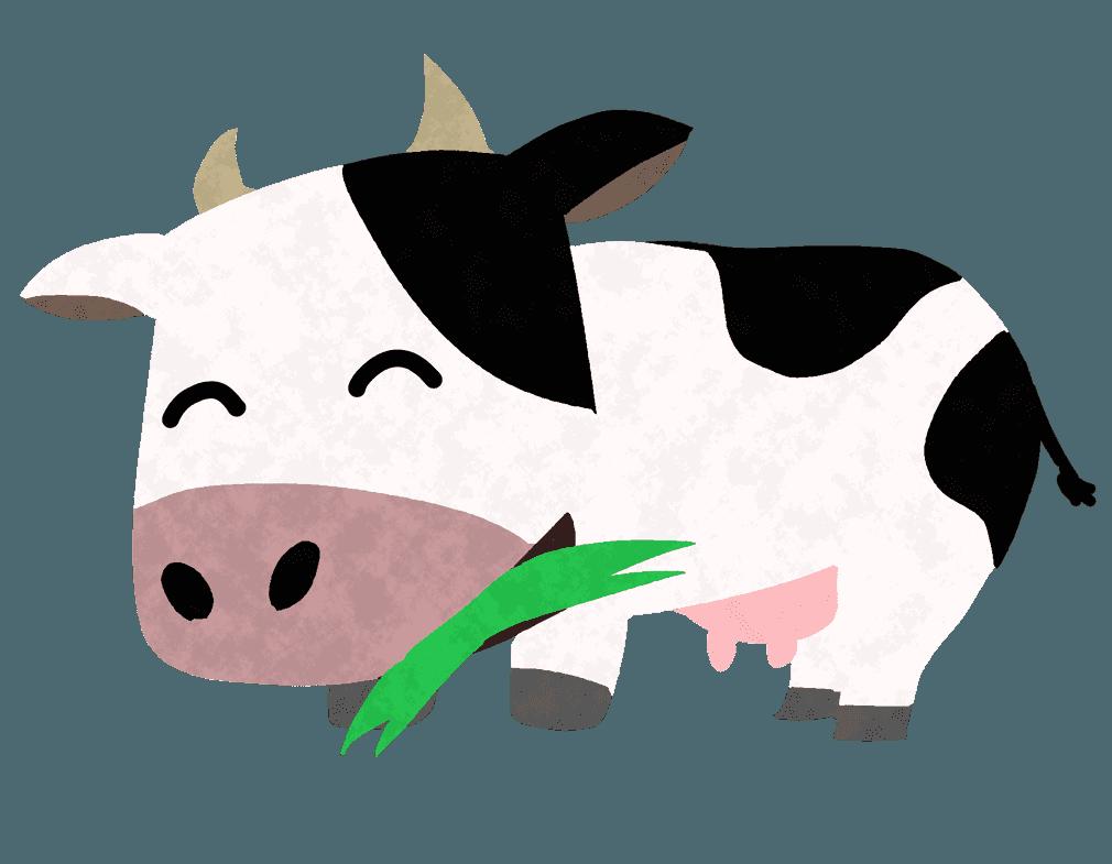 牧草を食べる白黒の牛イラスト