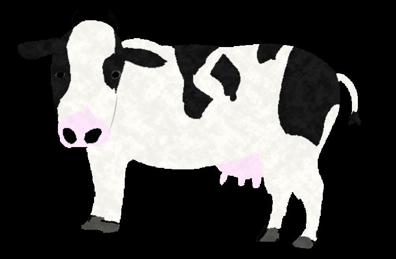 手書きの可愛い牛