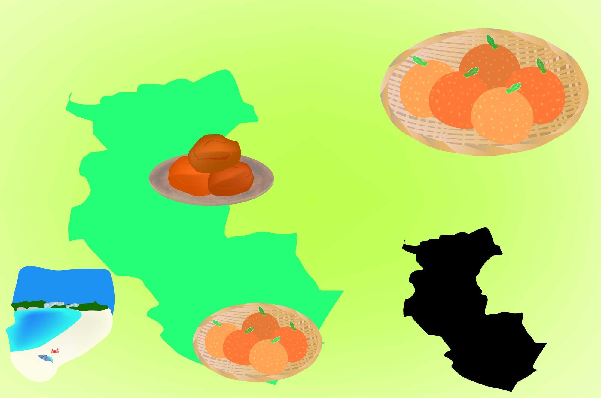和歌山の無料イラスト - 名産のみかん・梅の地図素材