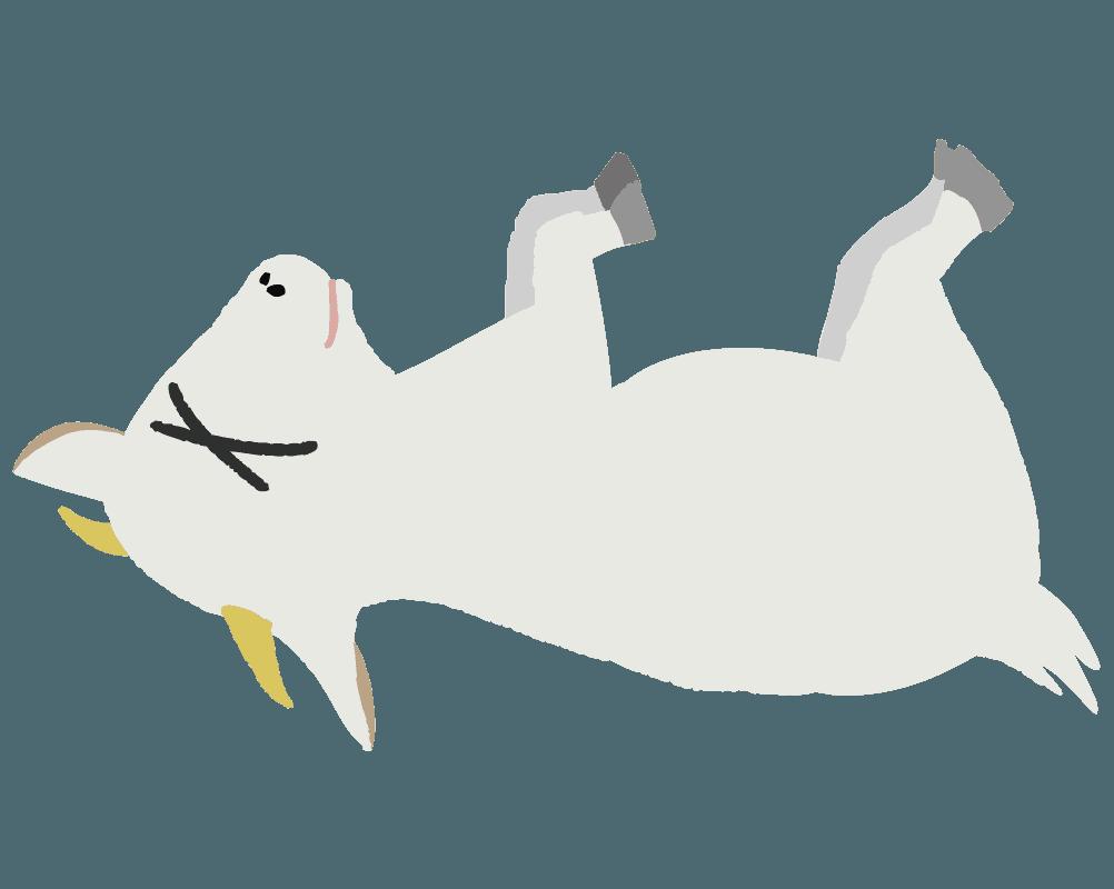 やられたヤギのイラスト