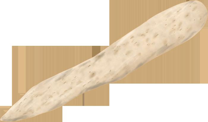 長芋のイラスト