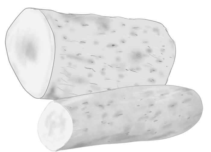 白黒印刷用の山芋のイラスト