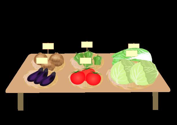 店頭に並ぶ野菜のイラスト1