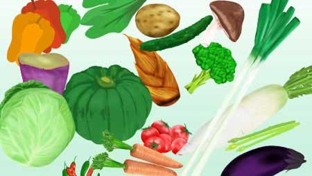 野菜イラスト - 全てフリーの手描きの可愛い無料素材