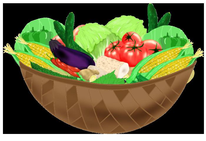 カゴの野菜イラスト2
