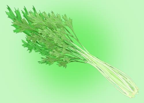 水菜のイラスト