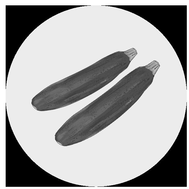 ズッキーニのイラスト(白黒)