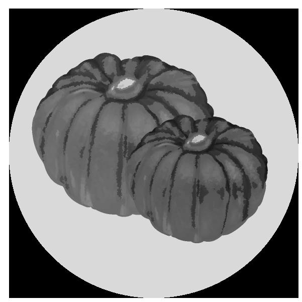 かぼちゃイラスト(白黒)