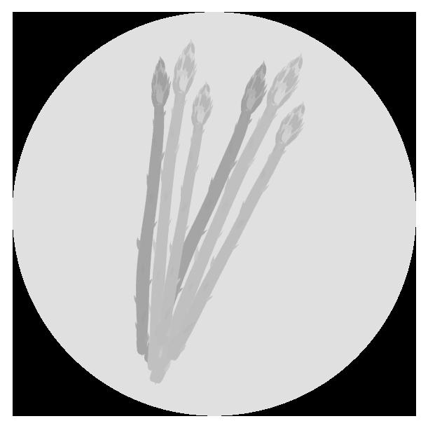 アスパライラスト(白黒)