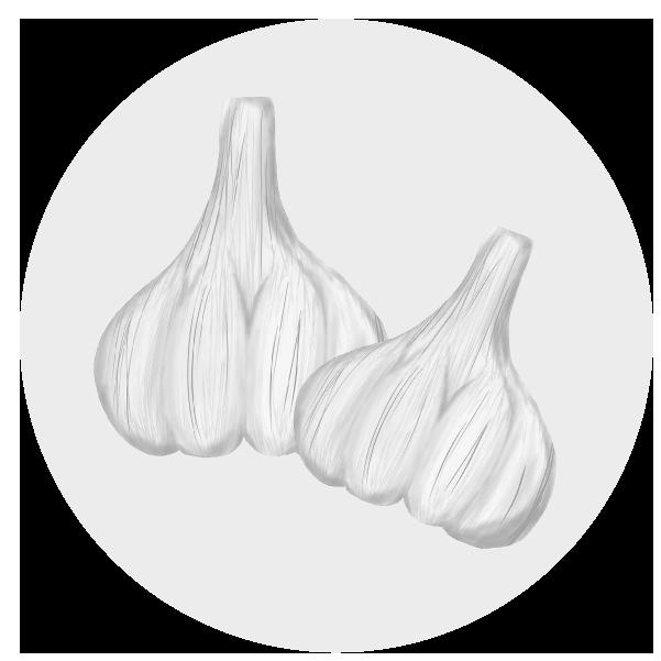 にんにくのイラスト(白黒)
