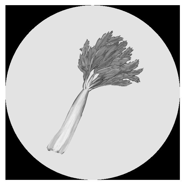 セロリのイラスト(白黒)