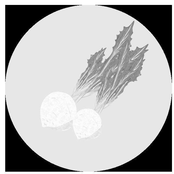 かぶのイラスト(白黒)