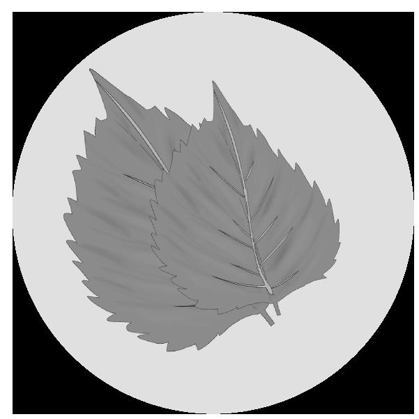 しそ・大葉のイラスト(白黒)