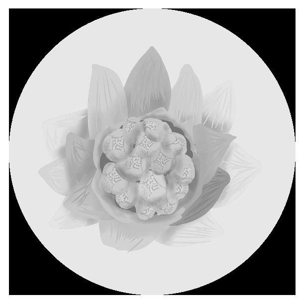 フキノトウのイラスト(白黒)