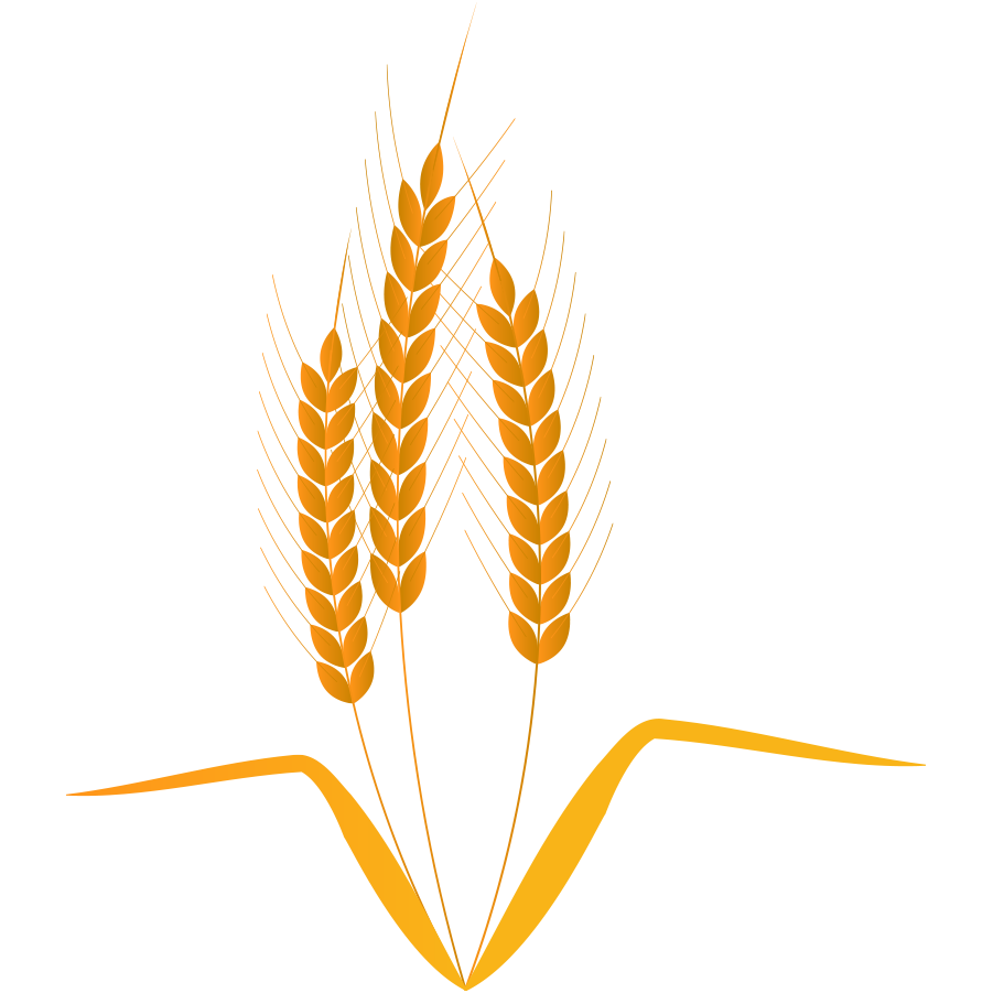 麦イラスト
