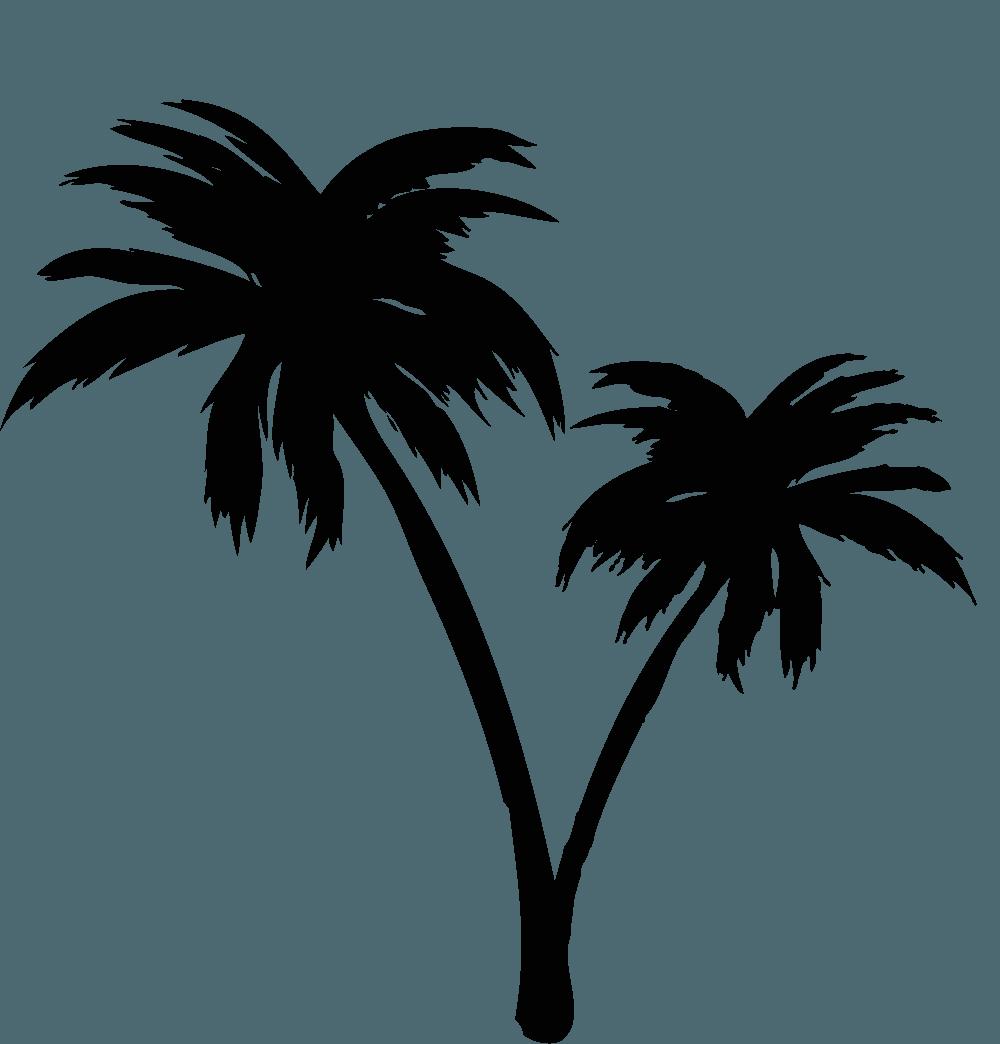 ヤシの木イラスト 南国の海にぴったりな木の素材 チコデザ