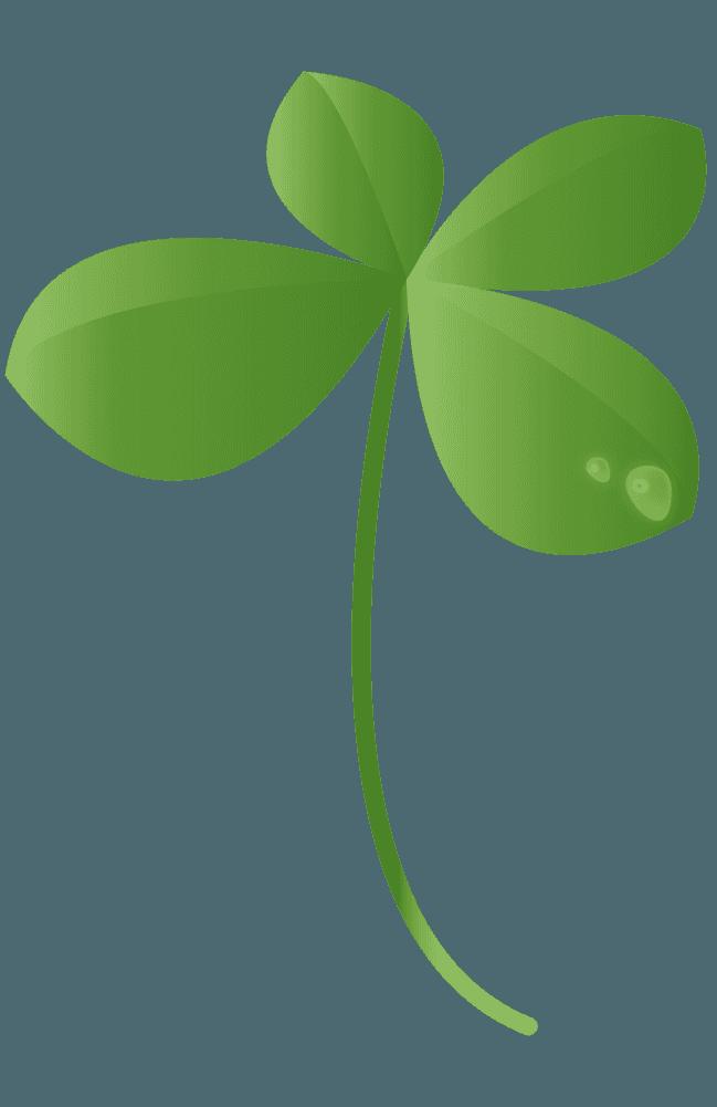 水滴と四つ葉のクローバーイラスト