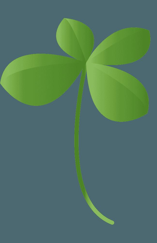 リアルな四つ葉のクローバーイラスト