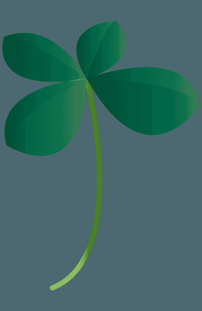 青々しい四つ葉のクローバーイラスト