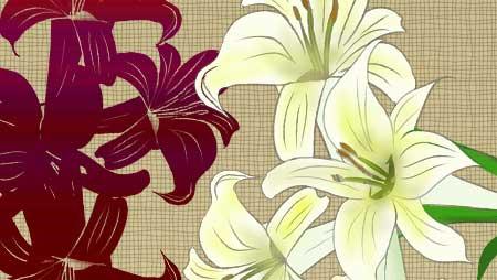 ゆりイラスト - 純粋でとっても奇麗な百合の無料素材