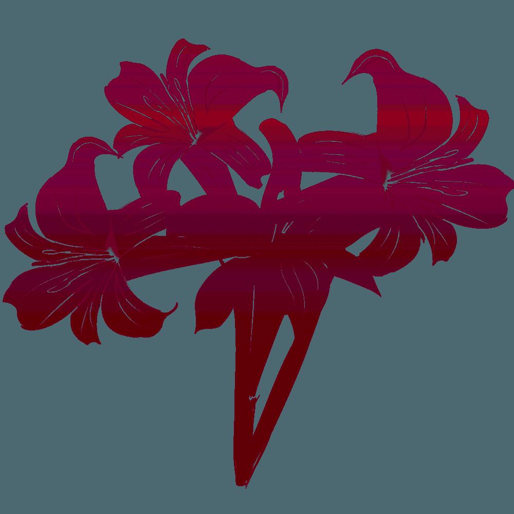 赤い色のゆりの花