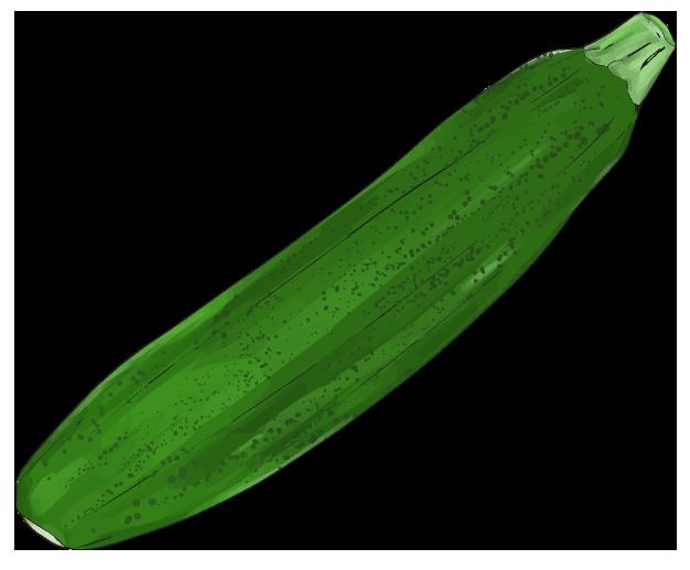 ズッキーニのイラスト(緑で細め)