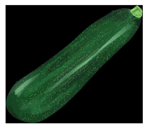 ズッキーニのイラスト(緑でずんぐり太め)